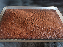 Kakaolu Unsuz Kek